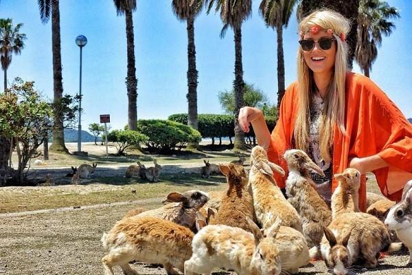 جزیره-خرگوش