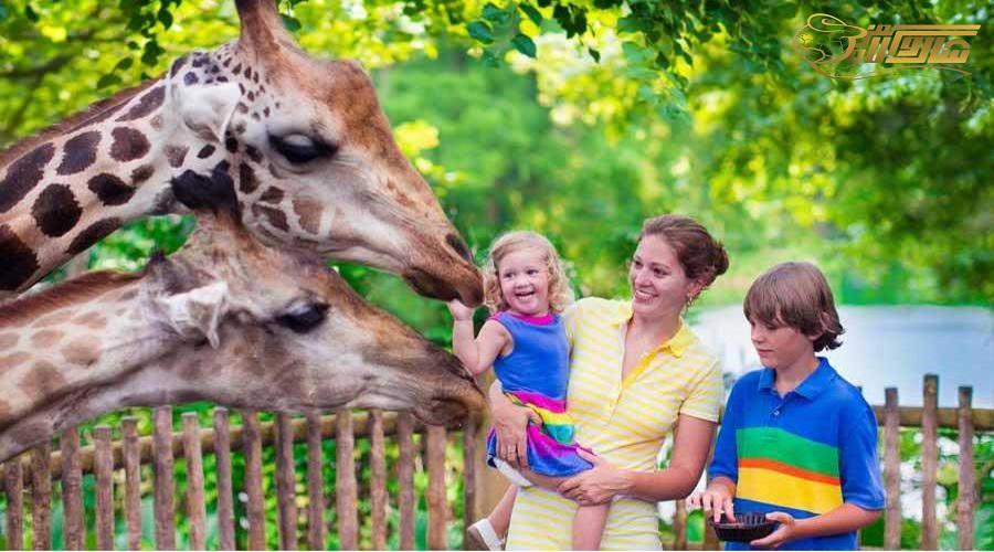 بازدید از باغ وحش در تور زمینی آنتالیا دی 1400