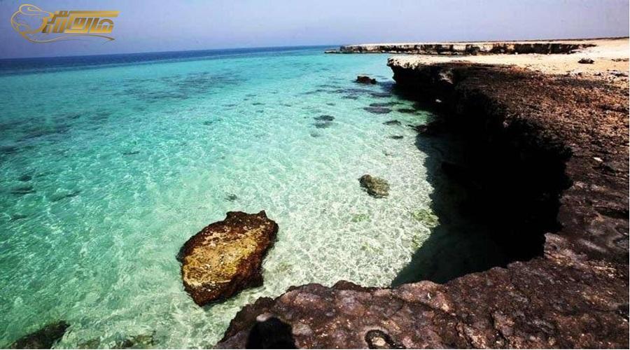 ساحل مرجان در تور کیش